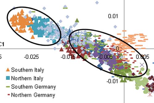 Italian clusters
