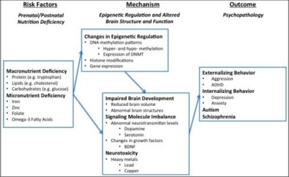 epigeneticfactor
