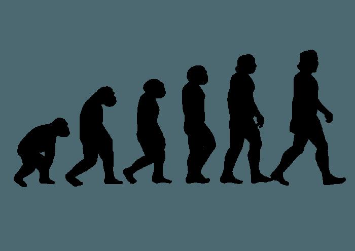 Human-evolution-silhouettes-01-700x495-1x3ej6l